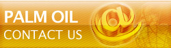 Contact Us - Palm Oil Factory